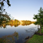Lake Nona - Village Walk Real Estate Management Company