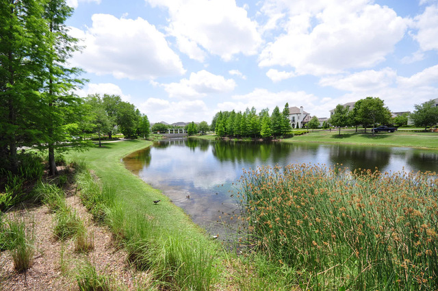 Orlando - Baldwin Park – Real Estate Management Services